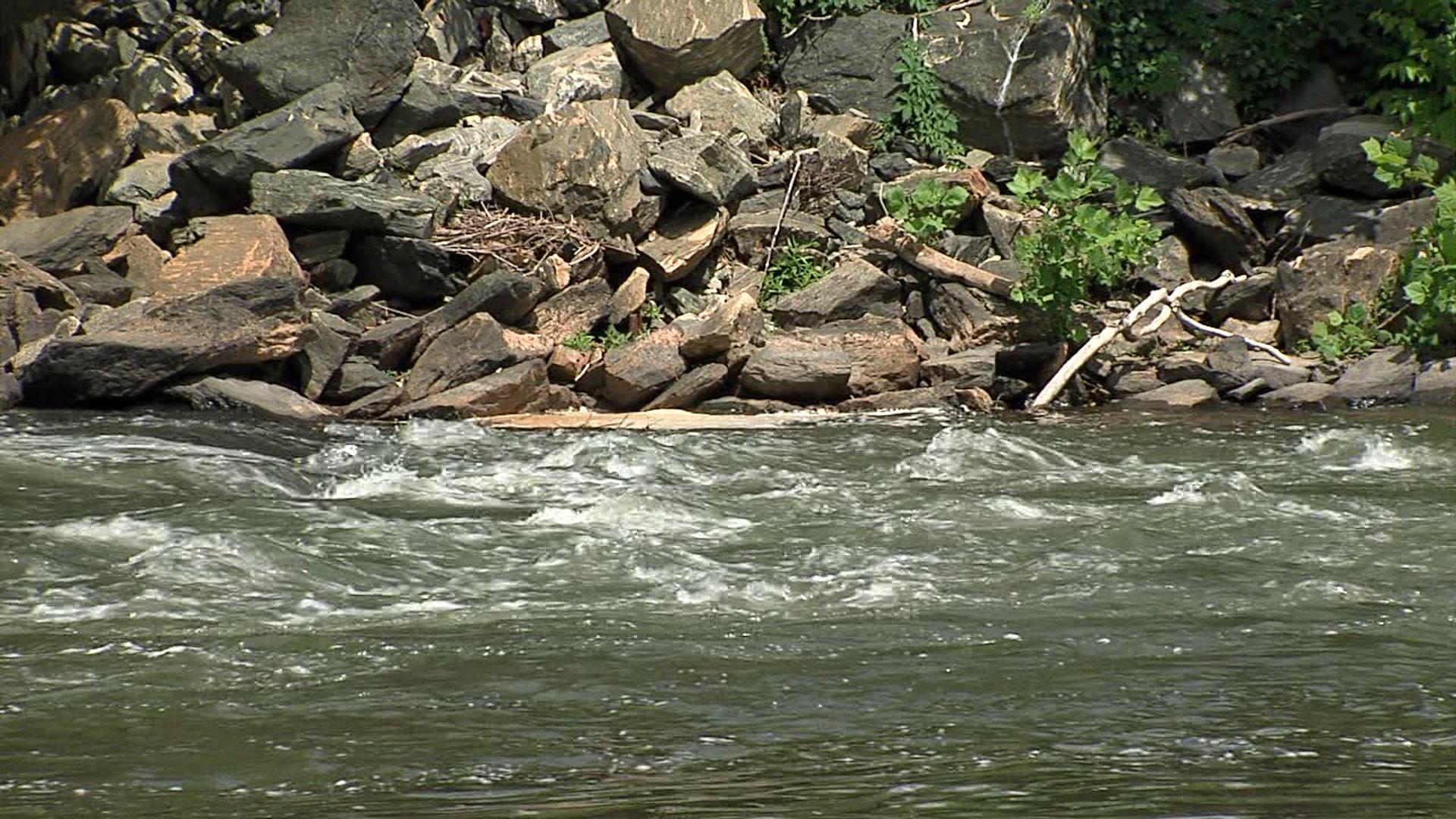 Dan River stock image