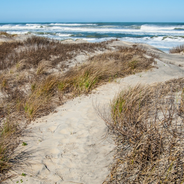 Cape Hatteras National Seashore (Getty Images)