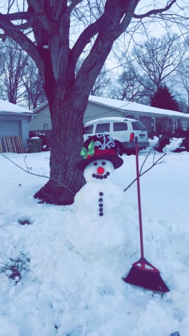 Fun in the snow! Submit photos of your snowman   myfox8.com