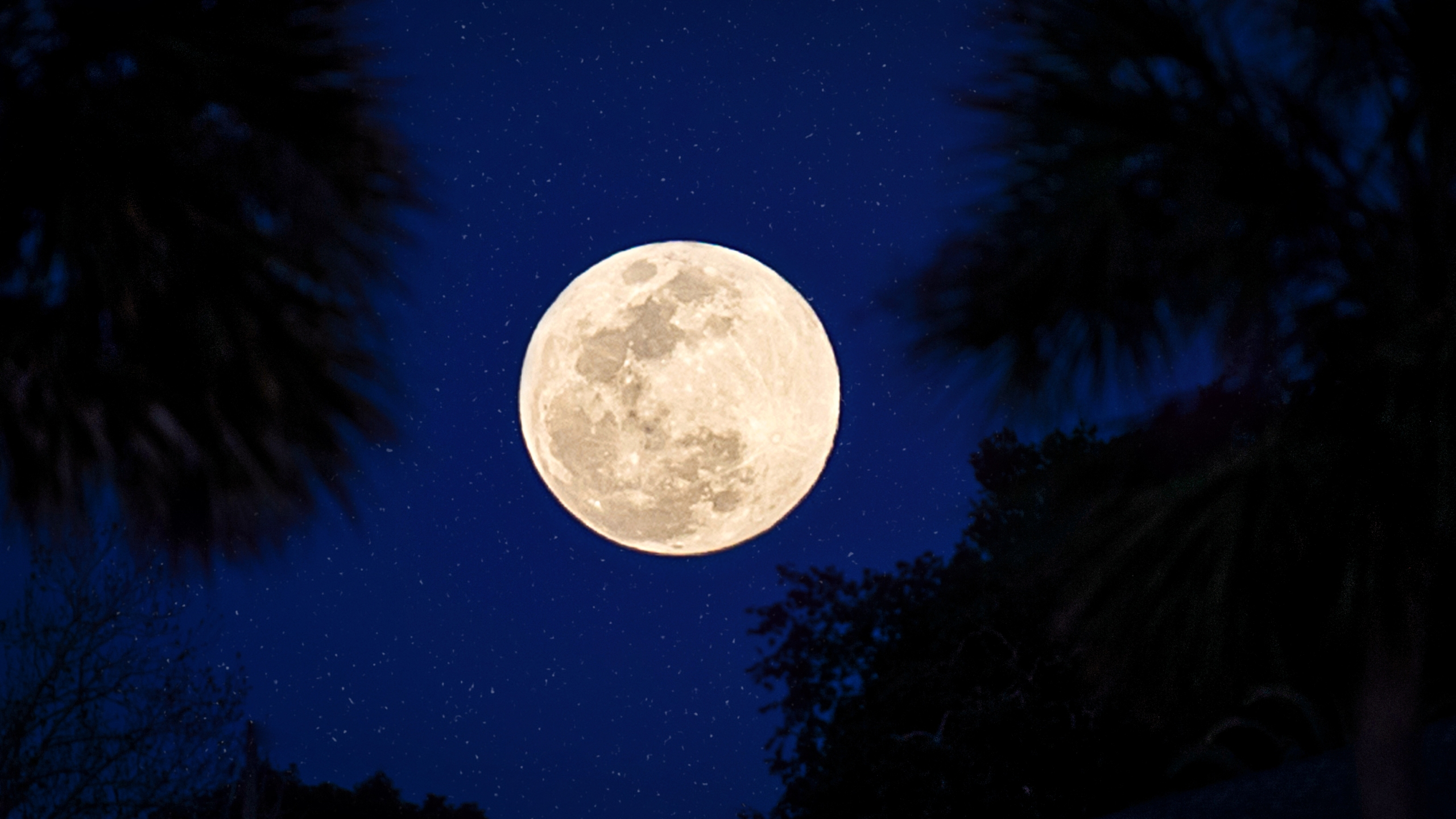 Full moon (Getty Images)