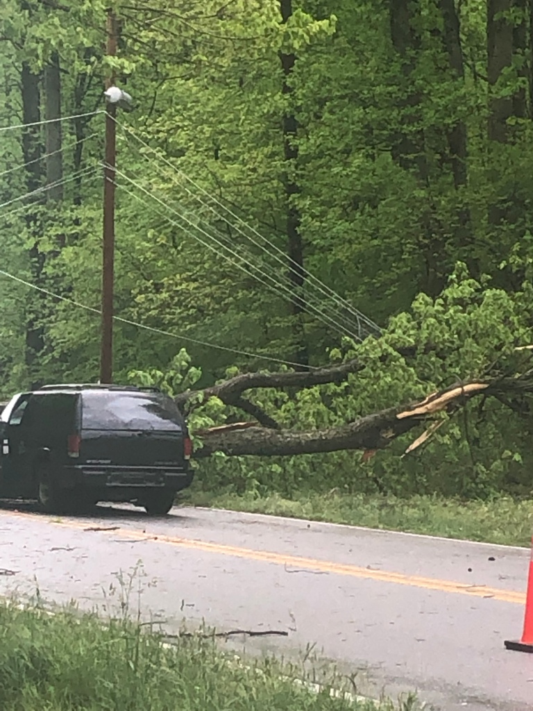 Tree down on Blair st in thomasville