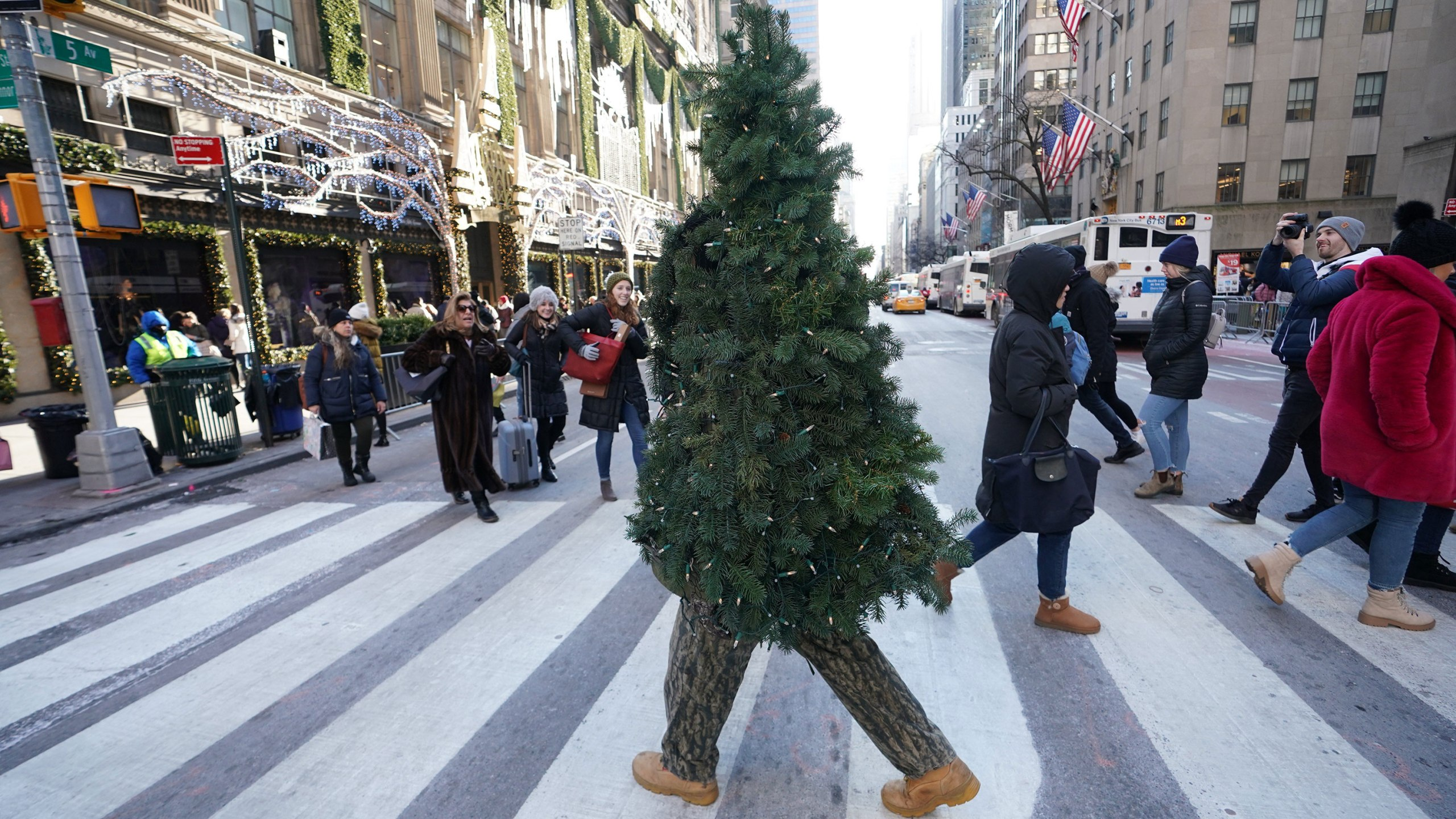 Man dressed up as Christmas tree is