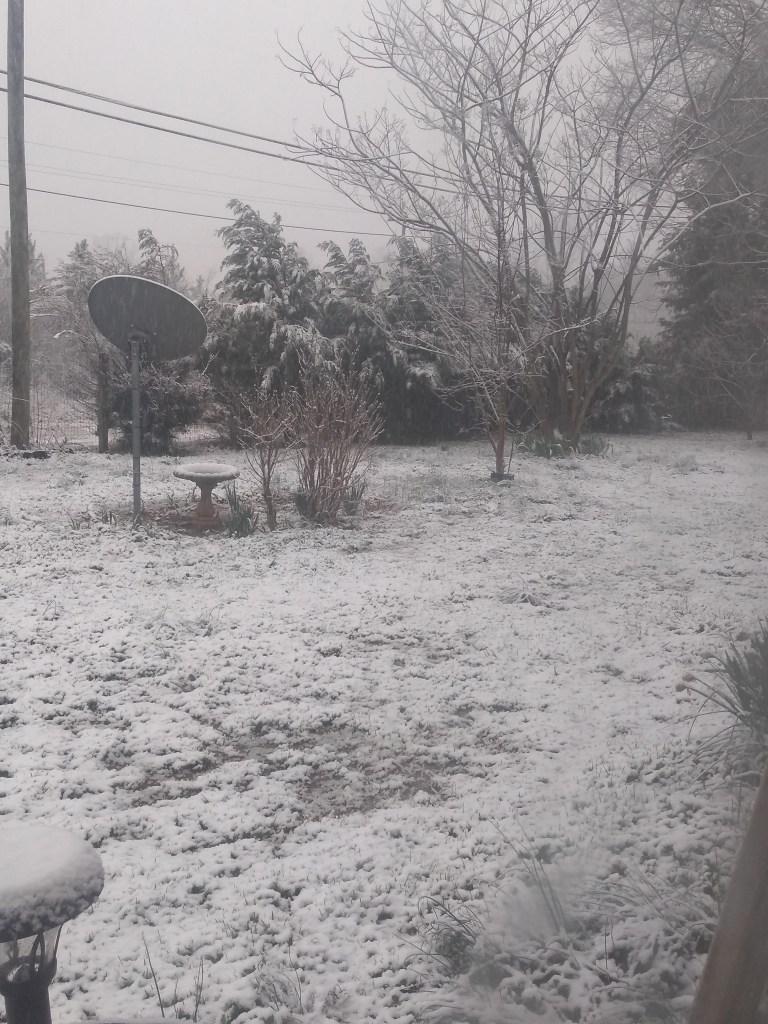Snow in Sophia