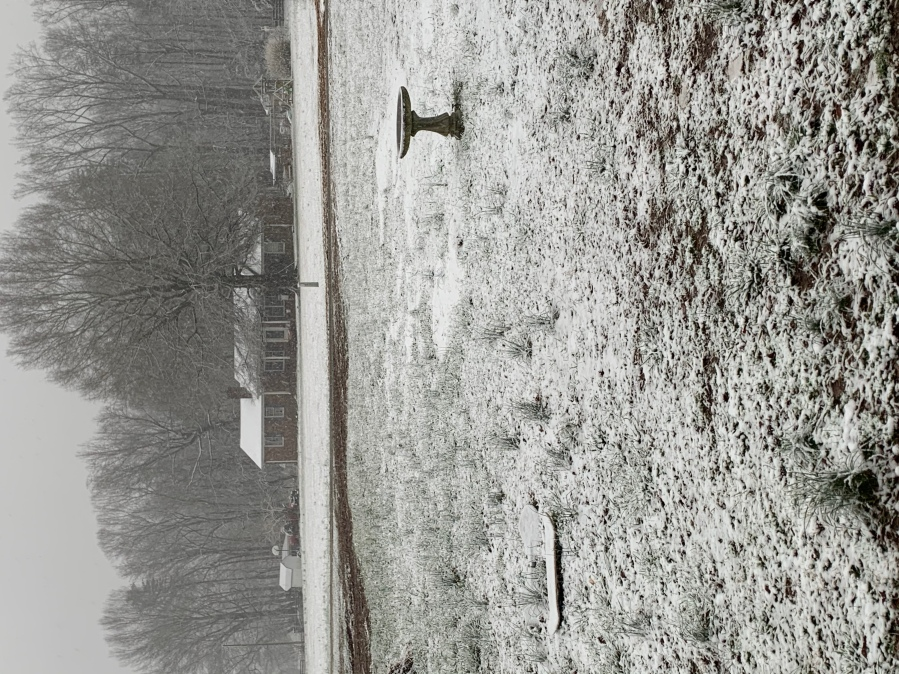 Beautiful snowfall in Caswell County!