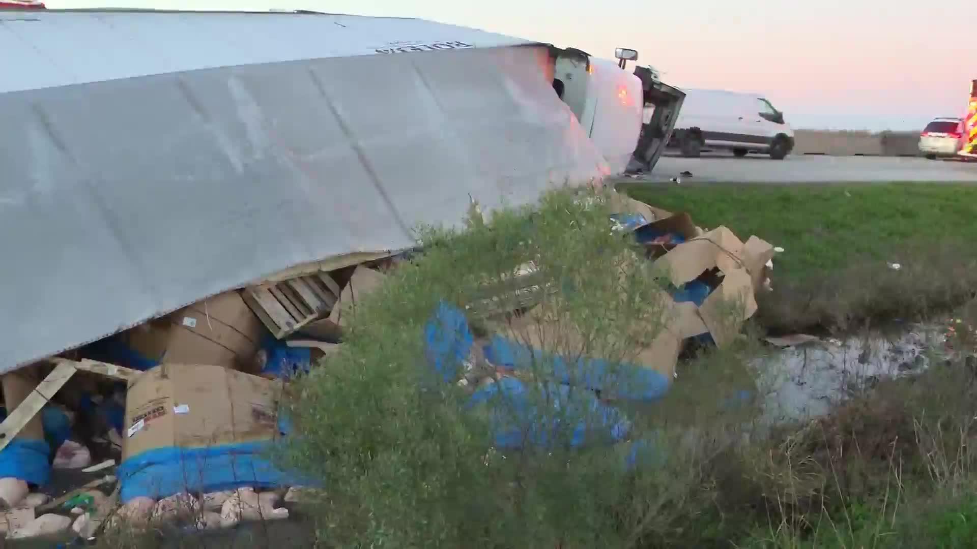 Tractor-trailer overturns, dumps pig parts on highway