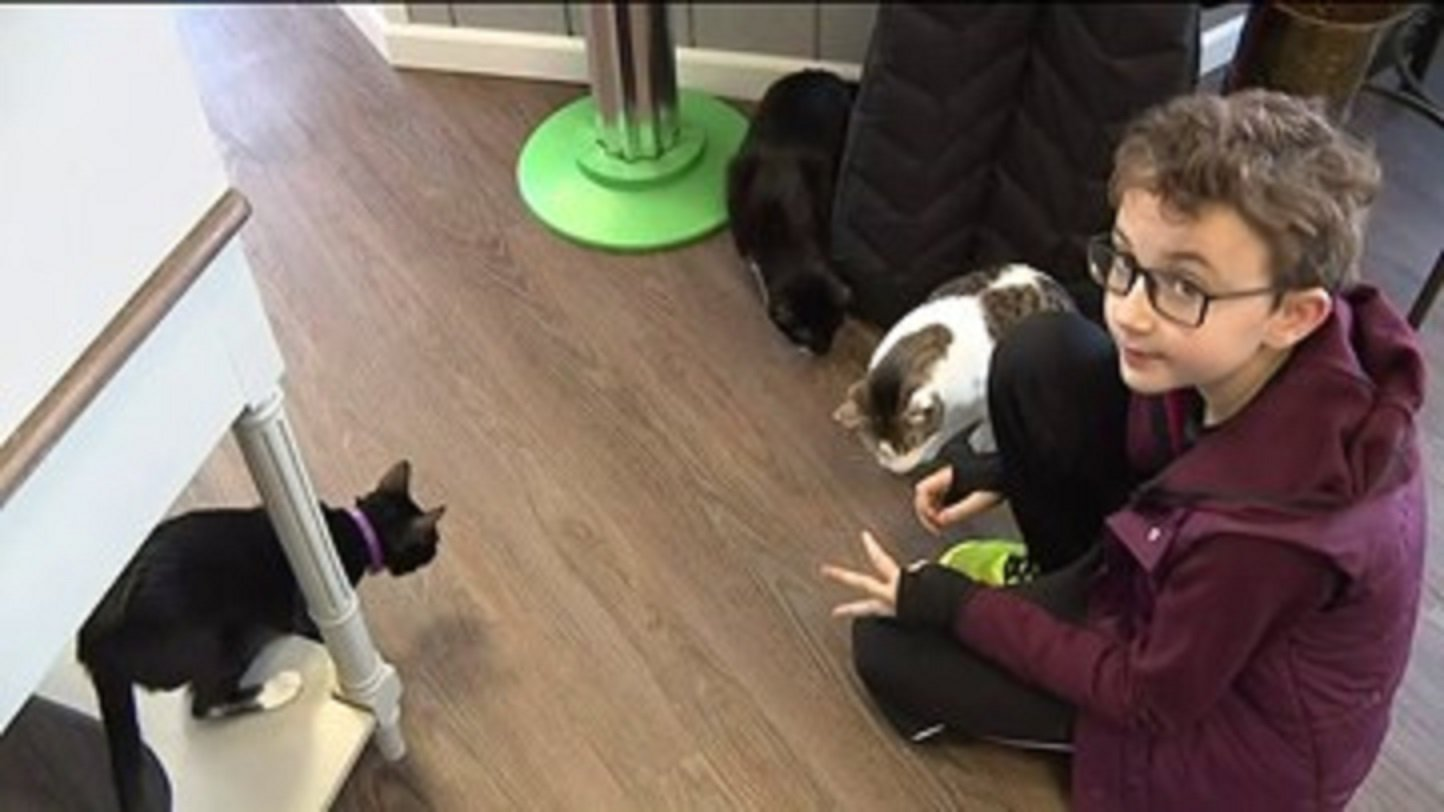 "Ivan Troychock recently celebrated his 10th birthday. Instead of presents, he asked for donations for ""Cats in Bloom,"" a cat cafe."