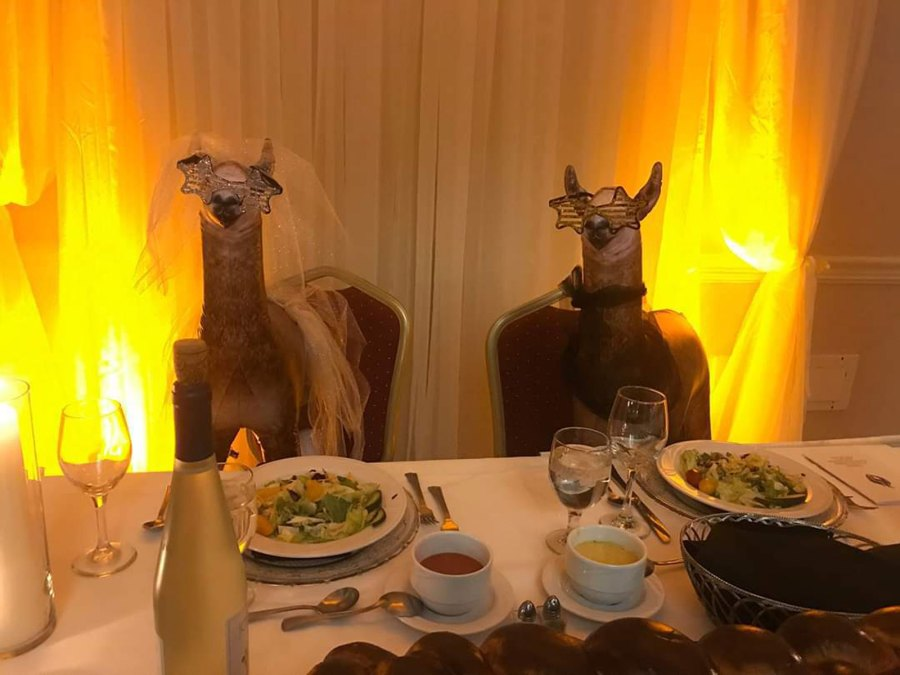 Two inflatable llamas were placed at the sweetheart table by Riva's friend