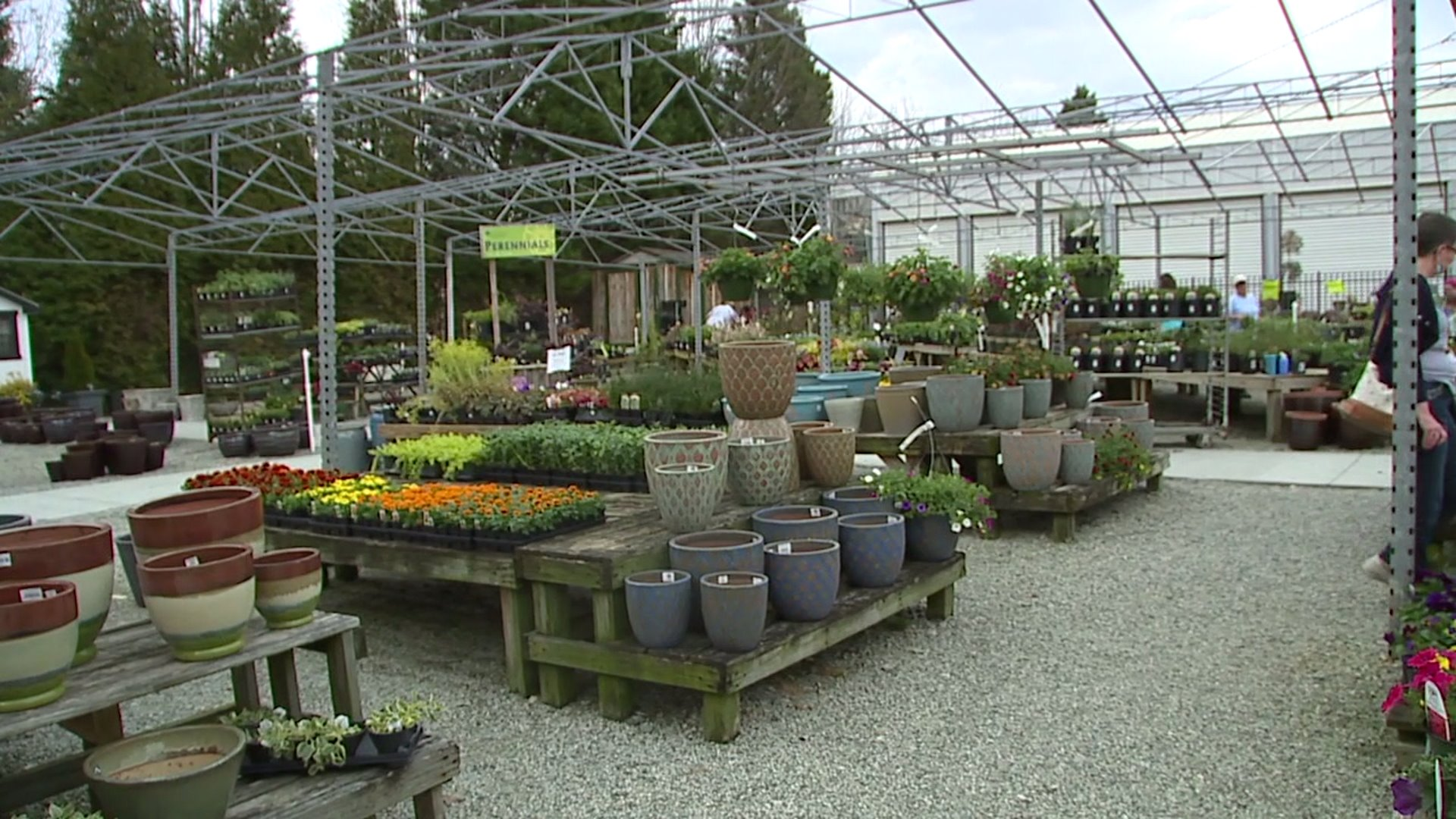 Greensboro garden stores staying busy despite coronavirus outbreak