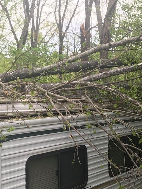 Storm damage in Ridgeway, Va. (Credit: Ray Powell)