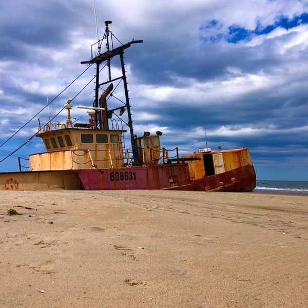 Ocean Pursuit (Cape Hatteras National Seashore)