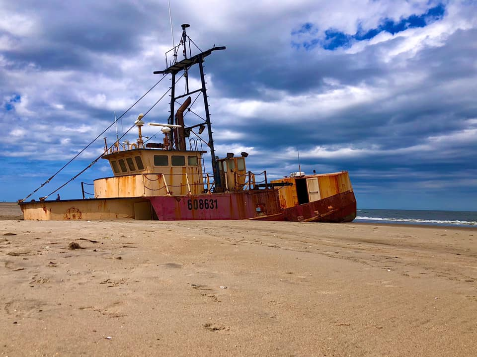 Ocean Pursuit (Cape Hatteras National Seashore)