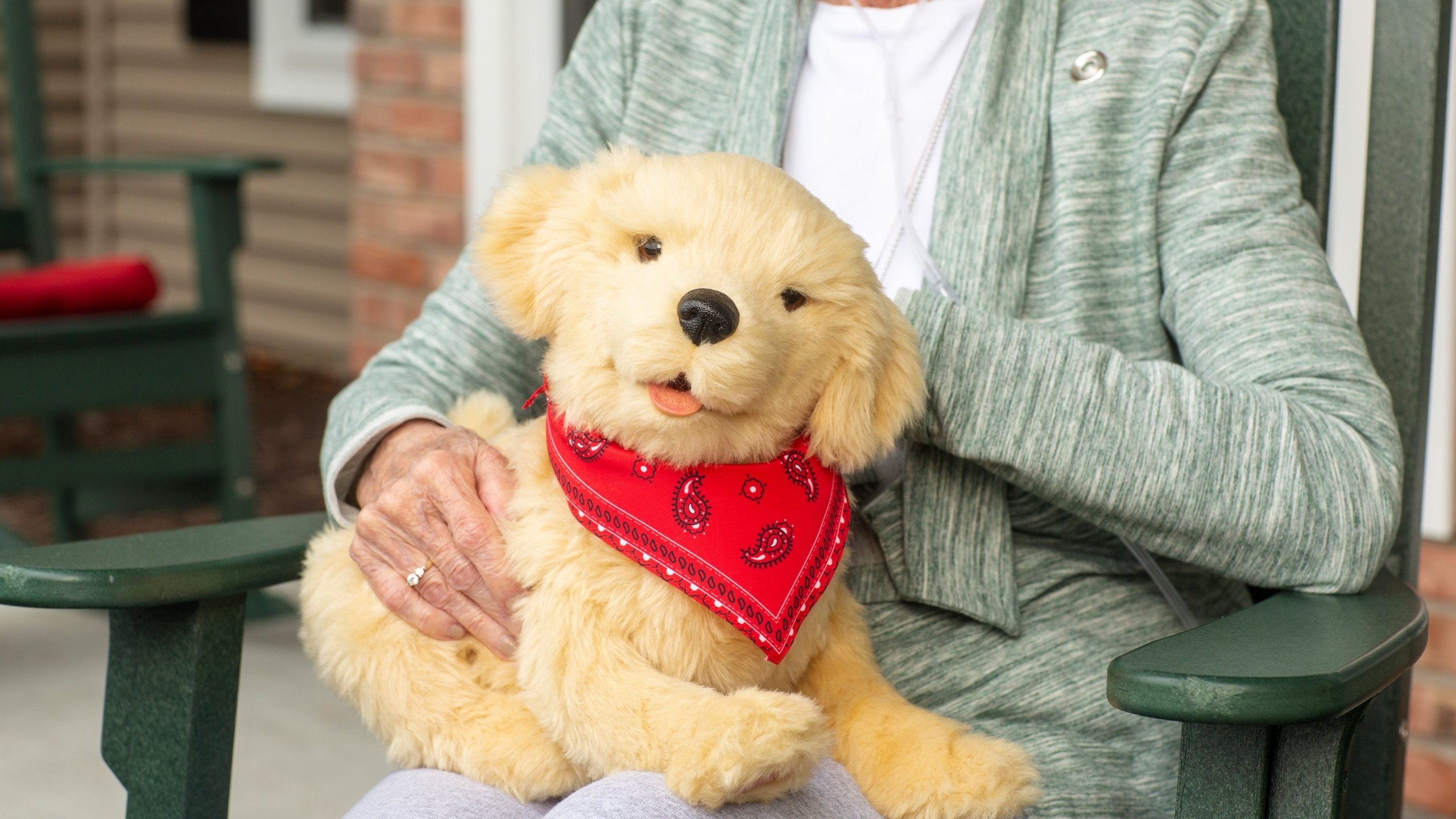 These robotic therapy pets will be provided for Florida seniors and older adults with Alzheimer's and dementia.