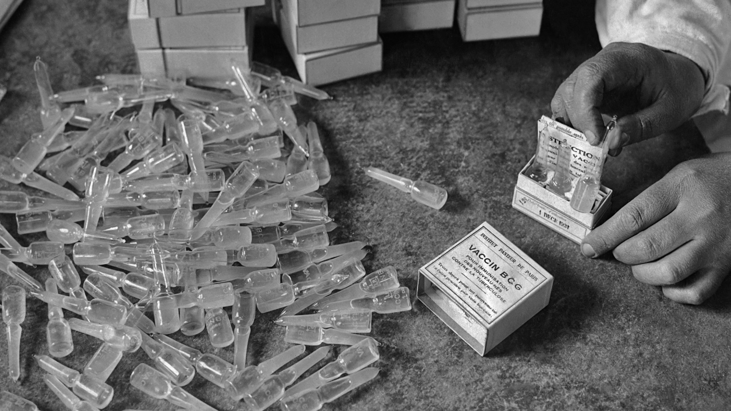 Packing ampoules of the BCG (Bacillus Calmette-GuŽrin) vaccine for tuberculosis developed by the Pasteur Institute in Paris, France in 1931. (Photo by FPG/Getty Images)