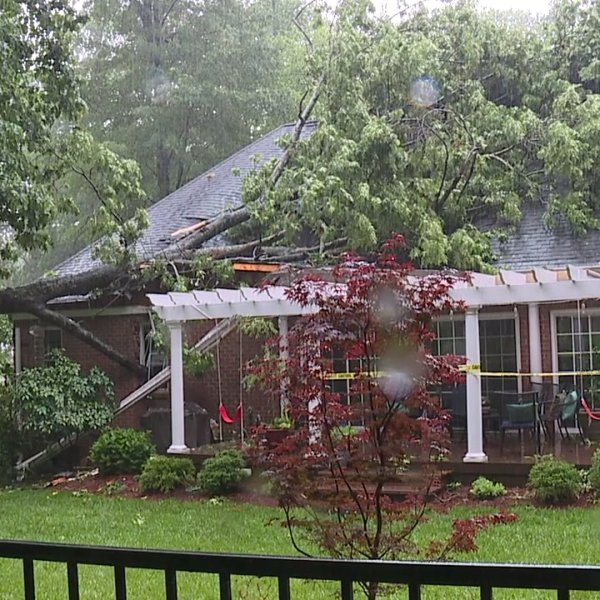 Family escapes after tree falls on their Greensboro home