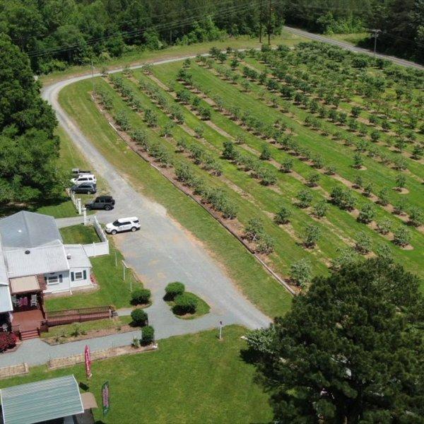 Local farmers create DIY farmer's market
