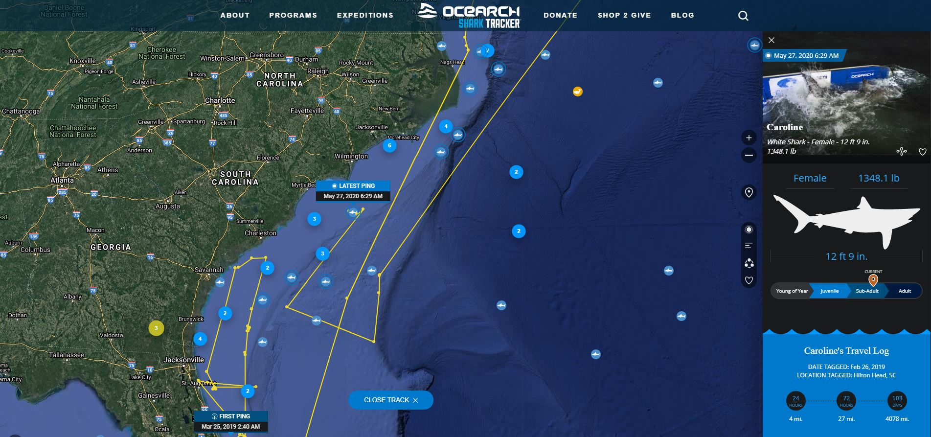 Screen shot of OCEARCH's tracking map on Wednesday, May 27, 2020. (Courtesy - OCEARCH)
