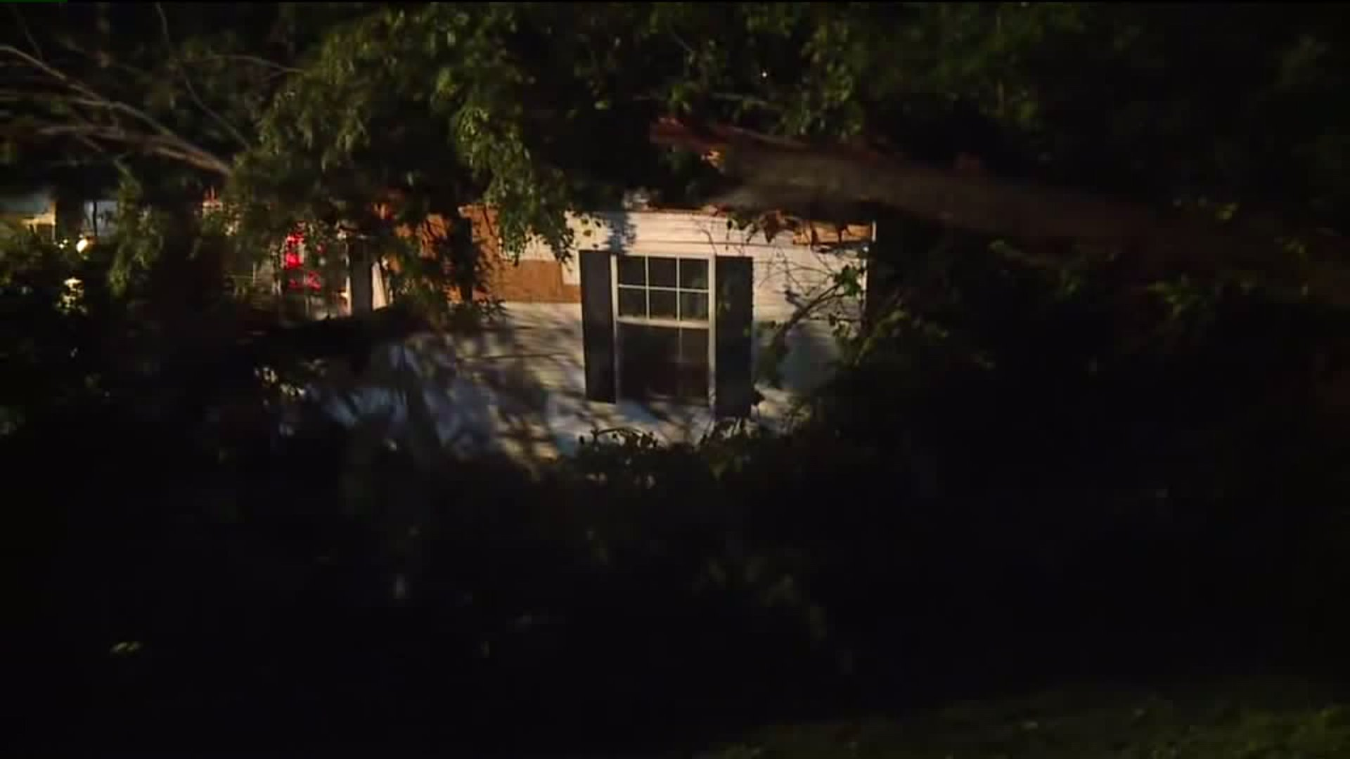 Tree crashes into Davidson County home