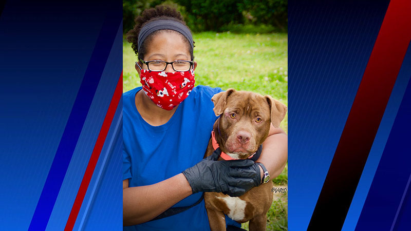 Meet Fando, FOX8's Pet of the Week