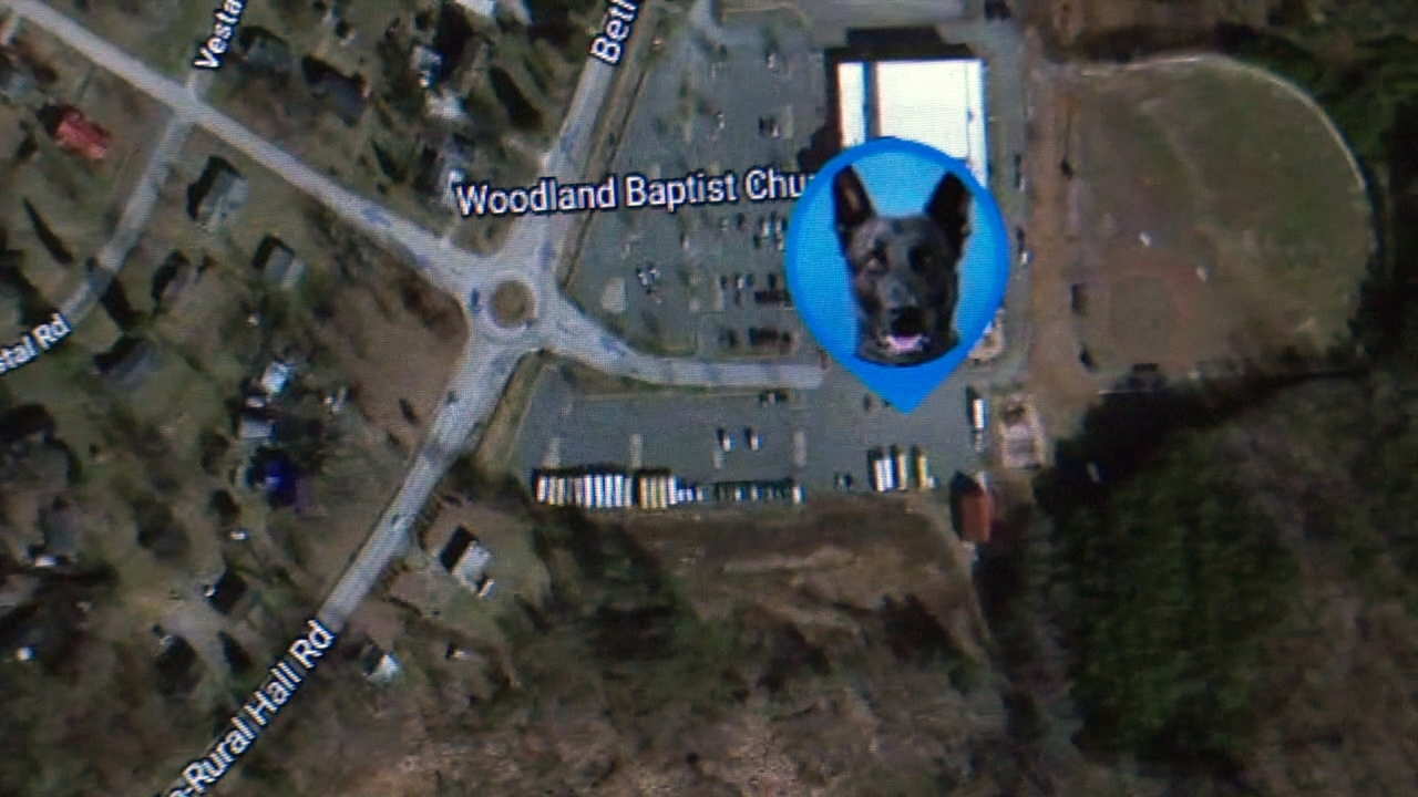 Forsyth County begins use of GPS trackers on K-9s during searches