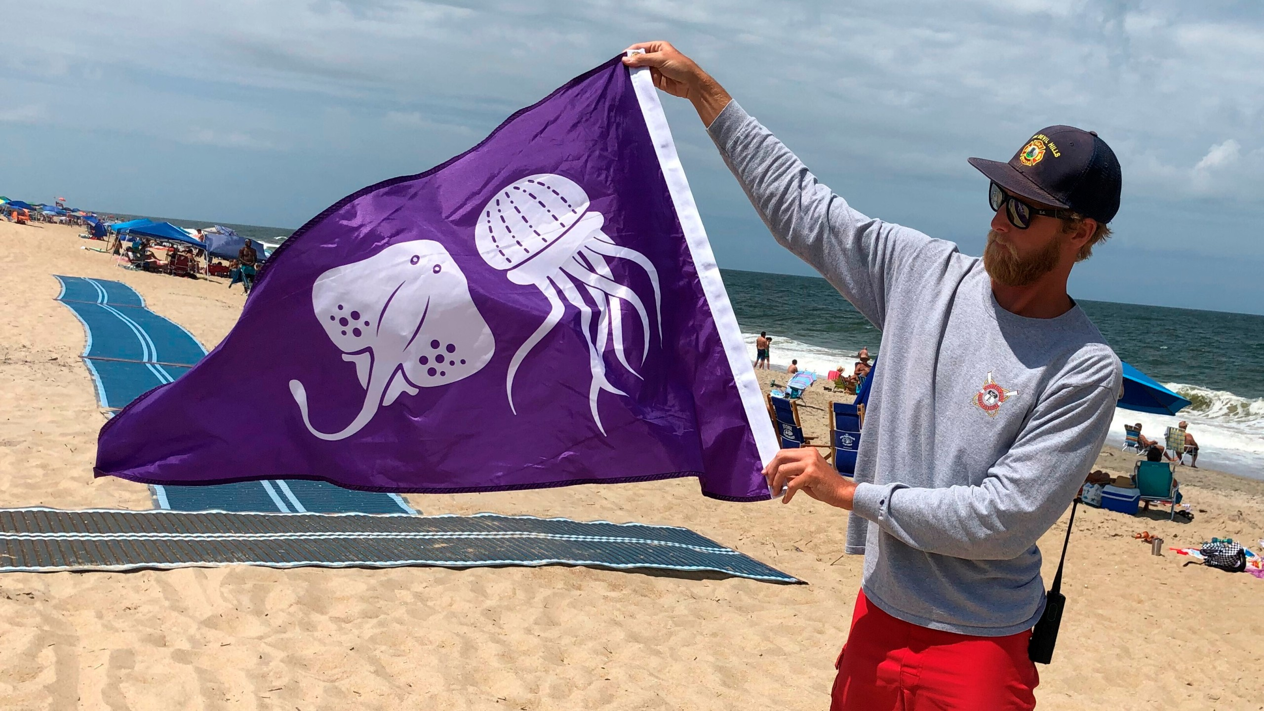 New Flag Warns Of Jellyfish Stingrays On Outer Banks Beach Myfox8 Com