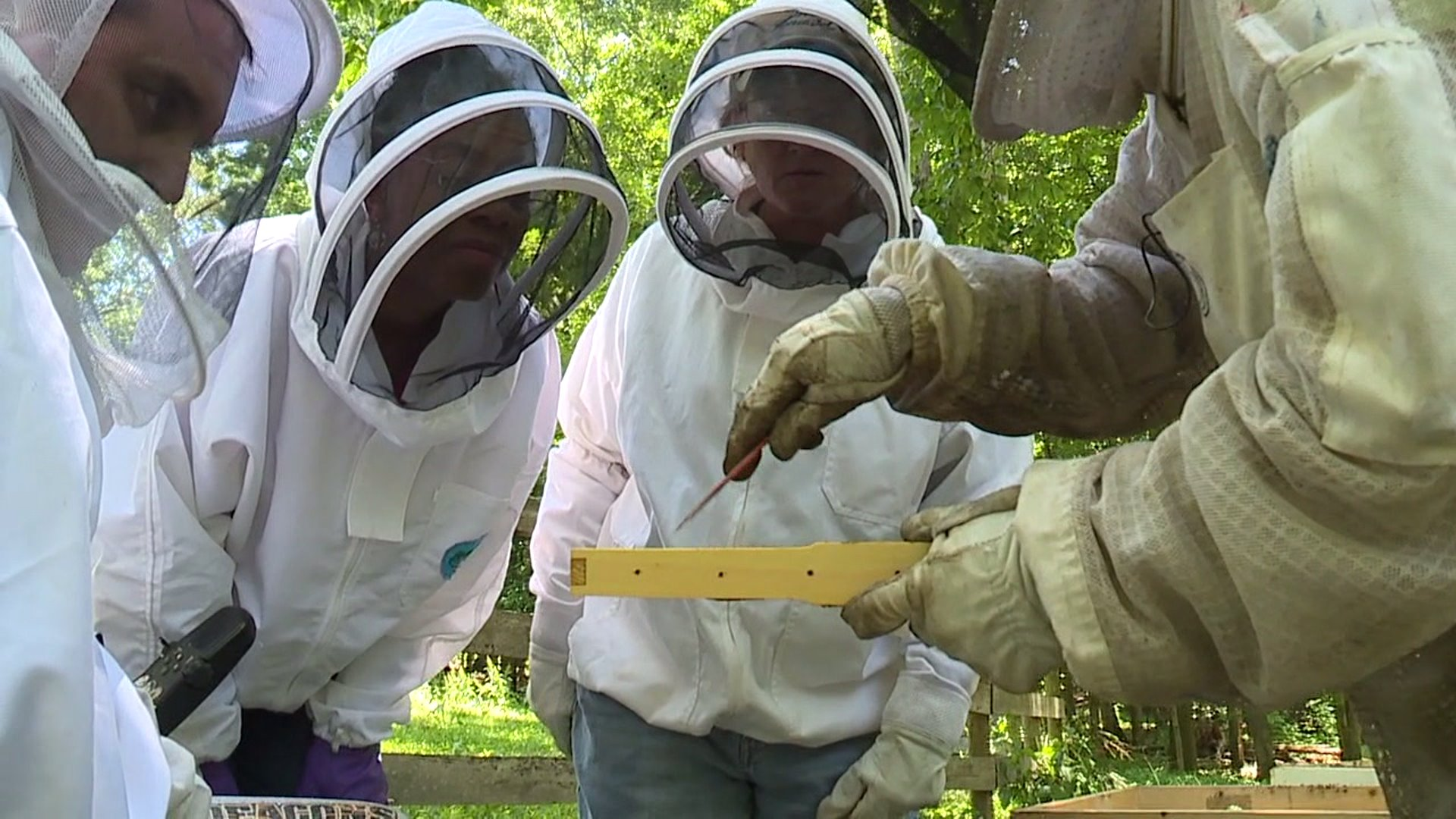 Beekeeper offers free classes to promote inclusion in the industry