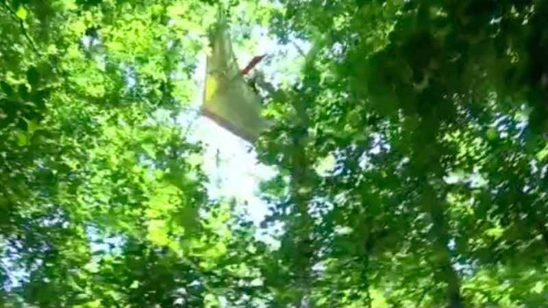 'I'm not surprised you couldn't hear him': Davidson County neighbors shocked to learn glider crashed into trees