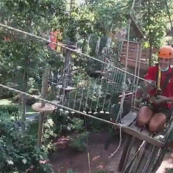 See wildlife like never before on the Greensboro Science Center's Skywild adventure course