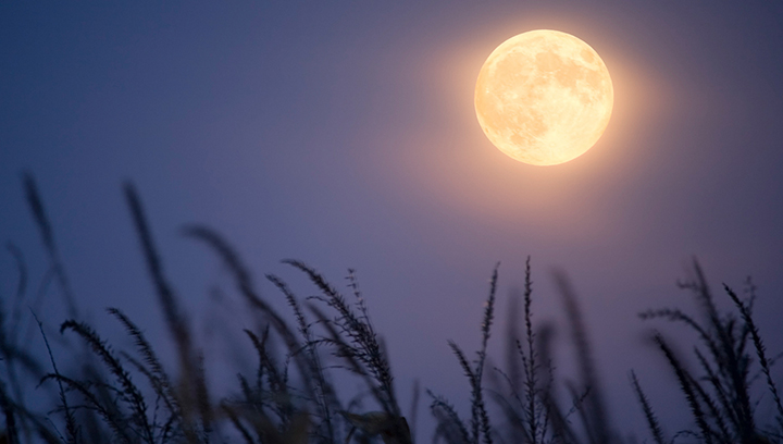 Full moon that happens only once every 3 years to brighten sky this week