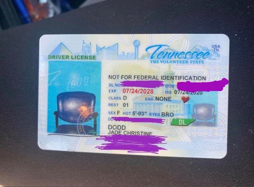 Tennessee woman renews license online, gets new ID with picture of empty chair