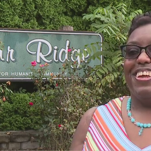 Building Stronger Neighborhoods in Greensboro looks to do just that