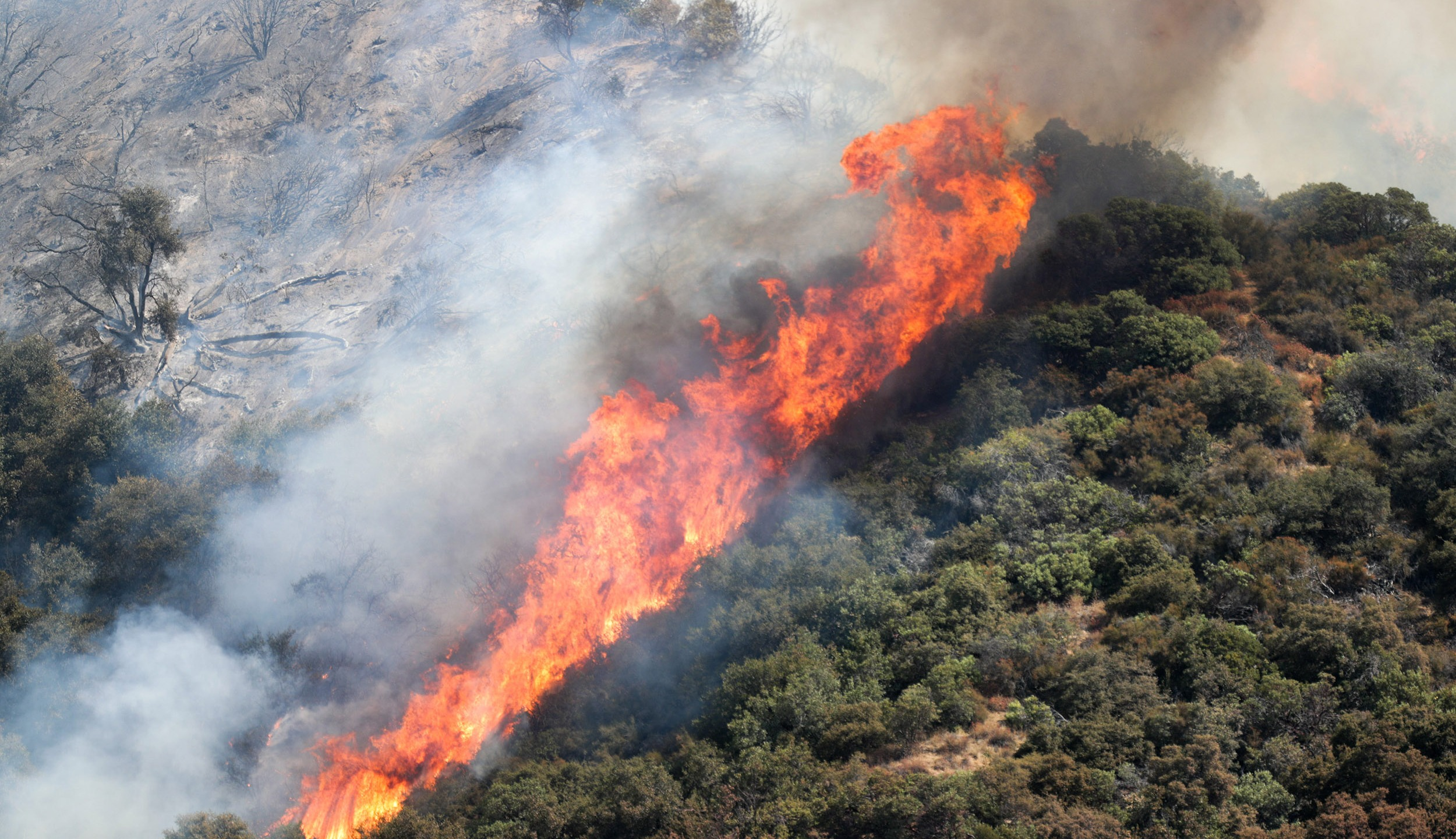The El Dorado Fire burns in the San Bernardino National Forest near Oak Glen, Calif., on Sunday, September 6, 2020.Eldoradofire 10