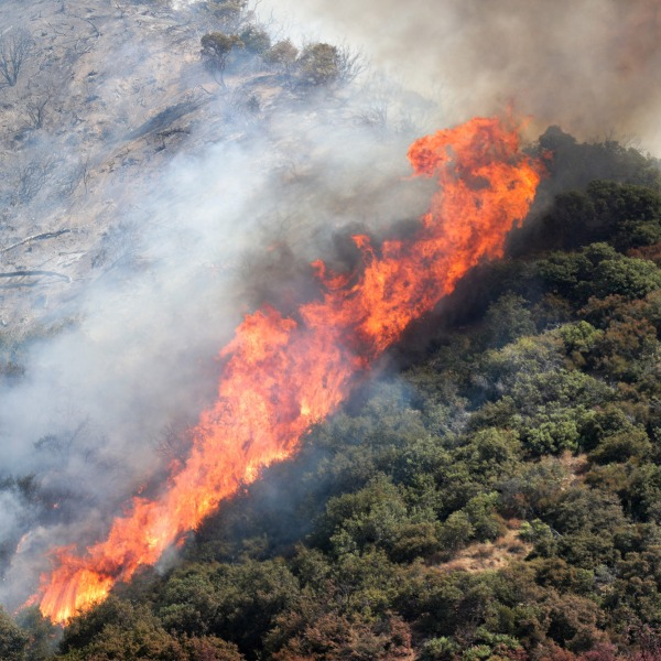 The El Dorado Fire burns in the San Bernardino National Forest near Oak Glen, Calif., on Sunday, September 6, 2020.Eldoradofire 10