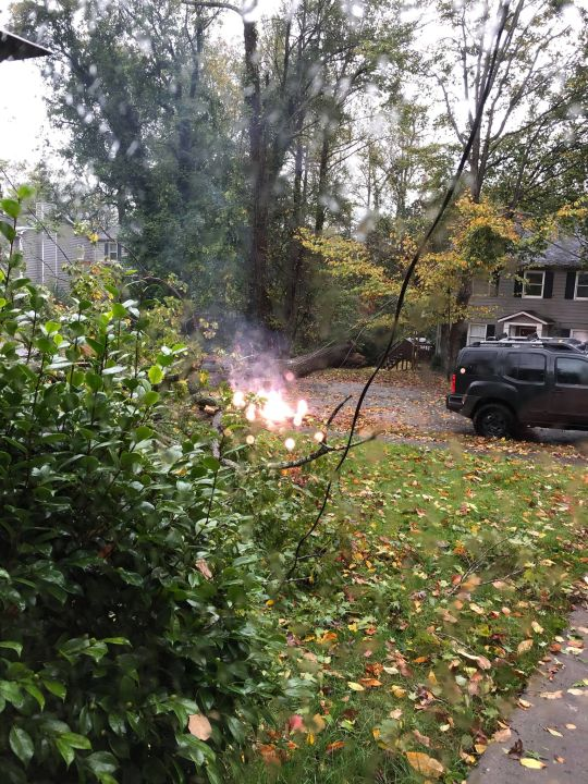 Downed power line causes sparks on Maplewood Avenue