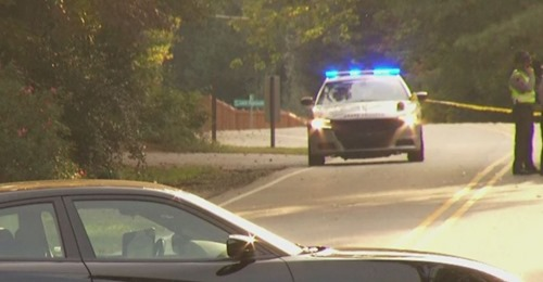 Woman in reflective vest, dog hit by box truck, killed in NC, officials say (WNCN)
