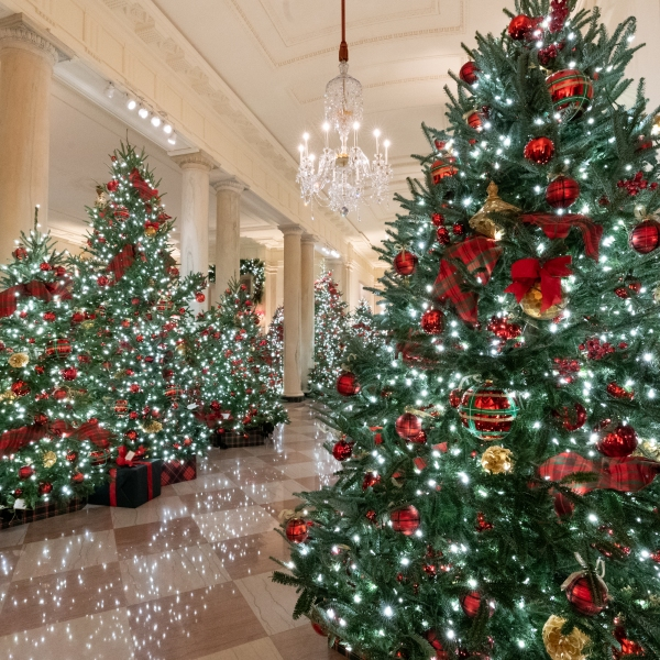 The Cross Hall of the White House is decorated for the Christmas season Sunday, Nov. 29, 2020. (Official White House Photo by Andrea Hanks)