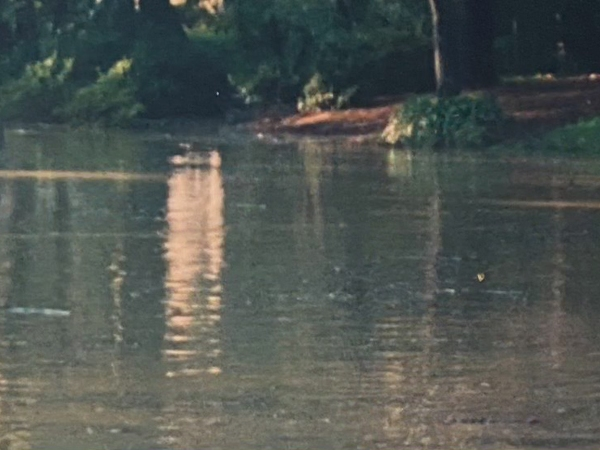 High Point neighborhood could be moving closer to resolving some of their flooding concerns