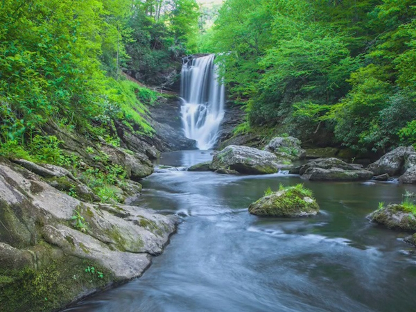 Stokes County man creates calendar with beautiful nature photography