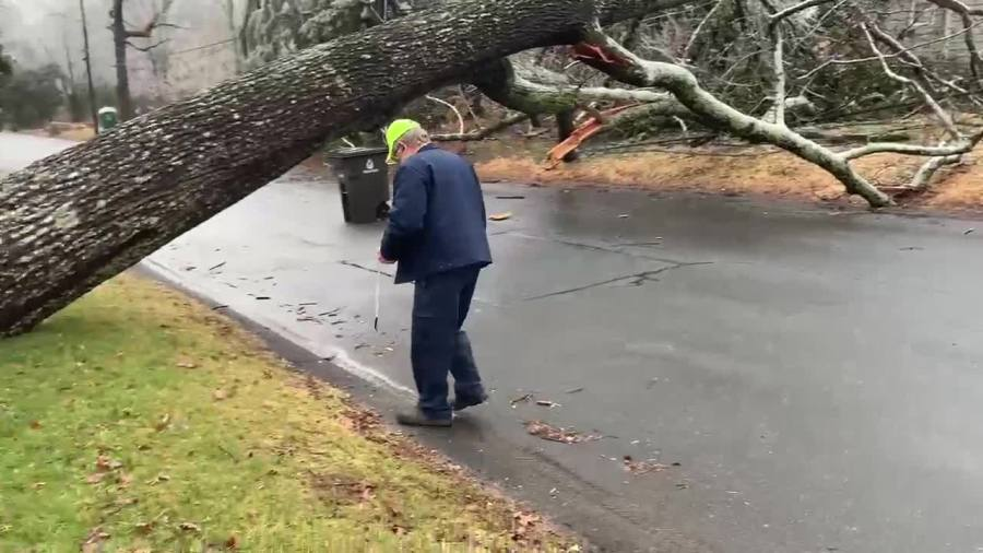 Winston-Salem officials working to determine if city is responsible for fallen tree cleanup on Pennsylvania Avenue