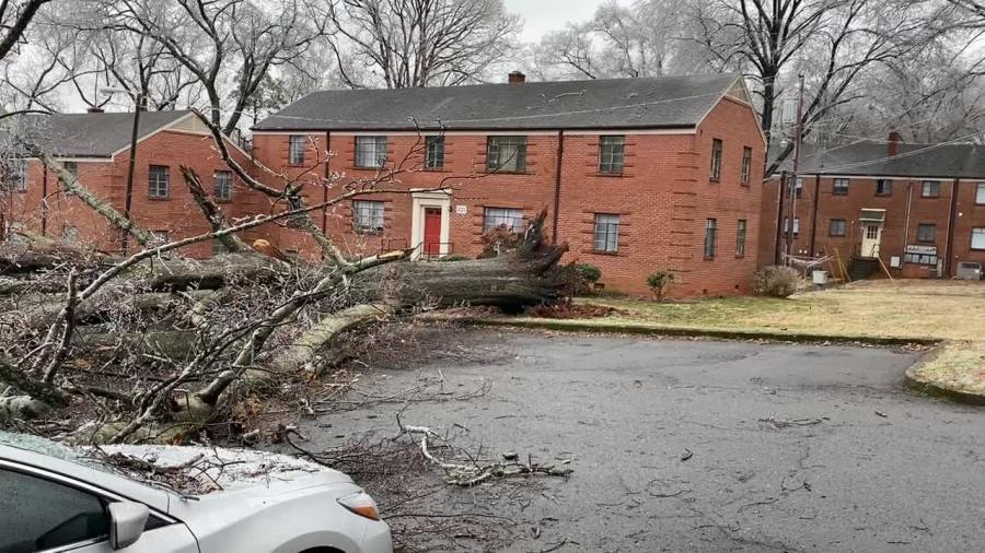 6 cars damaged by falling trees at Ardmore Terrace, Cloverdale Apartments in Winston-Salem