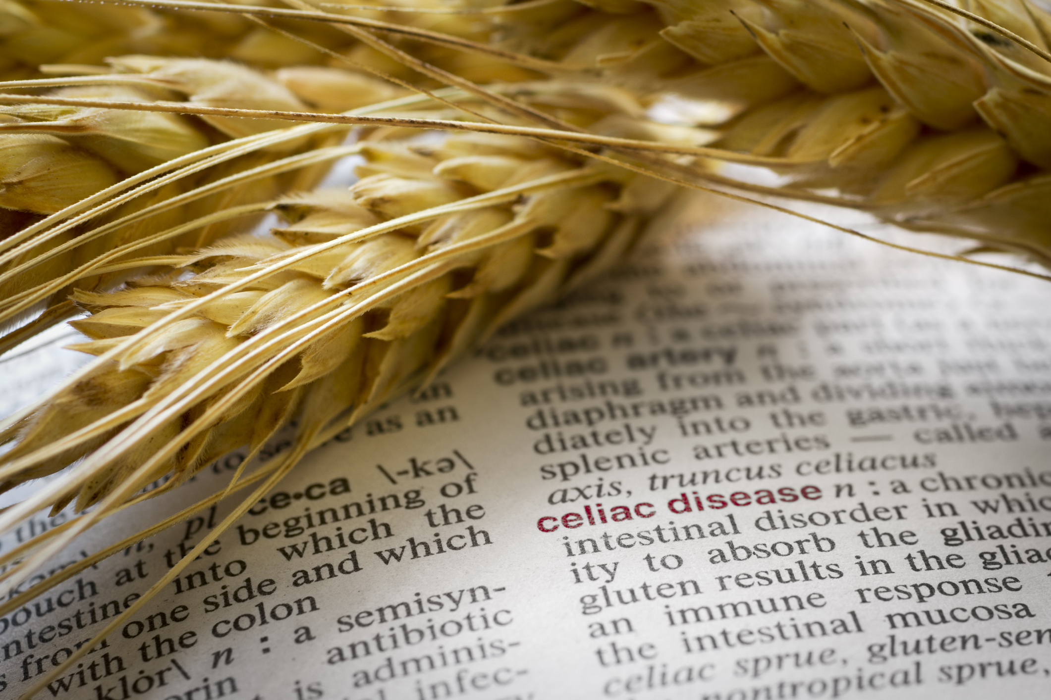 The definition of celiac disease as found in a medical dictionary. (Getty Images)