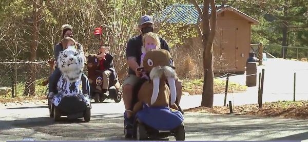 NC Zoo offers animal-themed rides for visitors