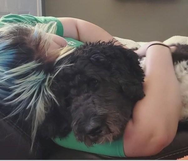 'Furry friend' helps lead Triad woman through battle with 3 cancers