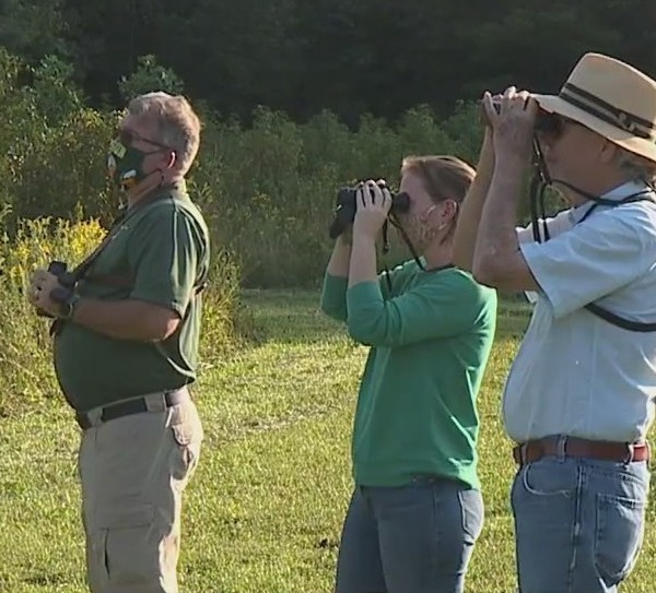 Researchers are trying to identify every bird in North Carolina, and anyone can help