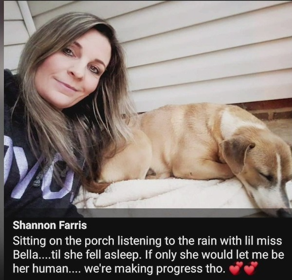 'It's been a long journey': Stray pup finds itself on Triad woman's porch; now, they couldn't be closer