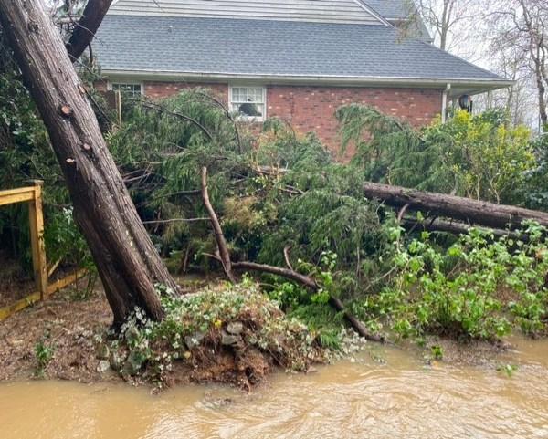 Storm damage (Amy Cawley/WGHP)