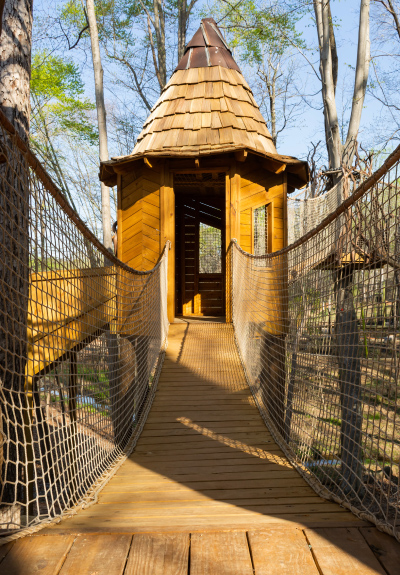Swing into the past with the Greensboro Science Center's new Kiwanisaurus Treehouse Adventure