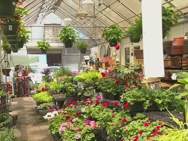 Small Business Spotlight: Guilford Garden Center is a one-stop shop for all your gardening needs