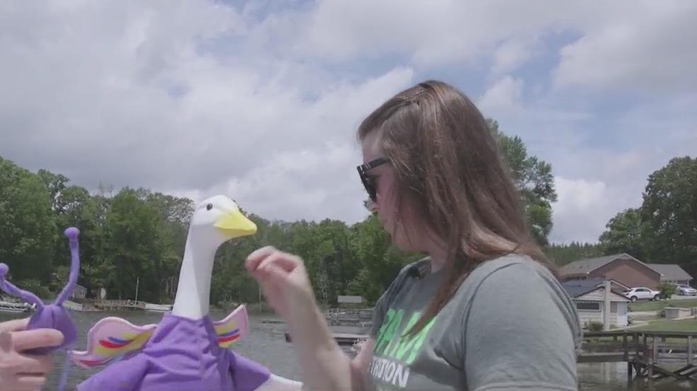 Minerva the Goose