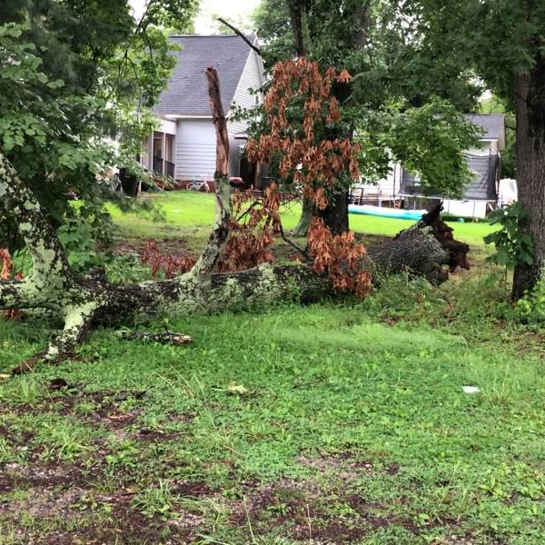 Thunderstorms roll through Piedmont over weekend; Energy officials working to restore power