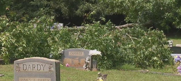 Families concerned about state of Randleman cemetery